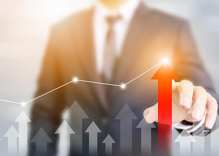 IPO体制構築支援